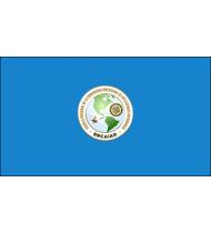 Bandera de la Escuela Regional de la Comunidad Americana de Inteligencia Antidrogas