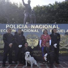 Especialización Técnica Profesional Enfermero Canino
