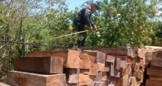 Desarrollamos actividades operativas para la protección del ambiente