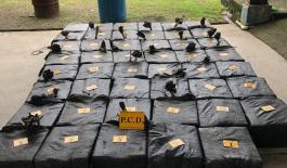 5.610-kilogramos-de-cocaína