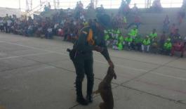 Comando-situacional-municipio-de-Santa-Rosa