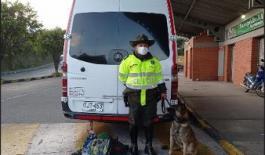 Canino detectó arma de fuego en maleta de viaje