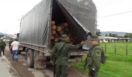 Ofensiva nacional contra la deforestación y el aprovechamiento forestal