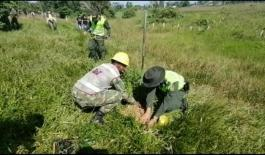 En Puerto Asís 800 árboles fueron plantados sobre la vía al muelle de la Esmeralda