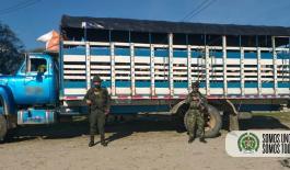 Ofensiva-regional-contra-el-abigeato-permitió-la-incautación-de-126-bovinos-de-dudosa-procedencia-en-el-Departamento-del-Meta1