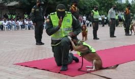 La Policía Nacional conmemora la primera ceremonia de caninos y felinos en la heroica