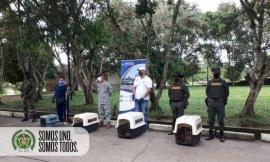 Cooperación interinstitucional para la protección del medio ambiente1