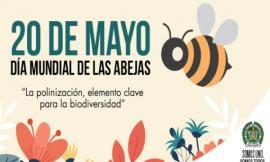 dia-mundial-abejas-2020