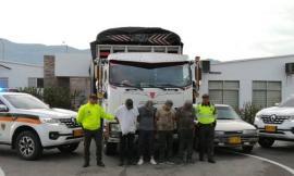 Delincuencia común organizada dedicados a la piratería terrestre en el eje cafetero y Bogotá