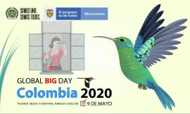 Global Big Day Colombia 2020