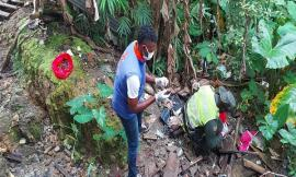 Recolectamos-42-kilos-de-caracol-gigante-Africano