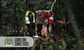 Captura delitos ambientales