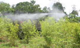 Se-implementa-estrategias-tecnológicas-e-innovadoras-que-fortalecerá-la-erradicación-de-cultivos-ilícitos