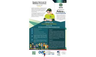 El artículo del día: Registro nacional de medidas correctivas