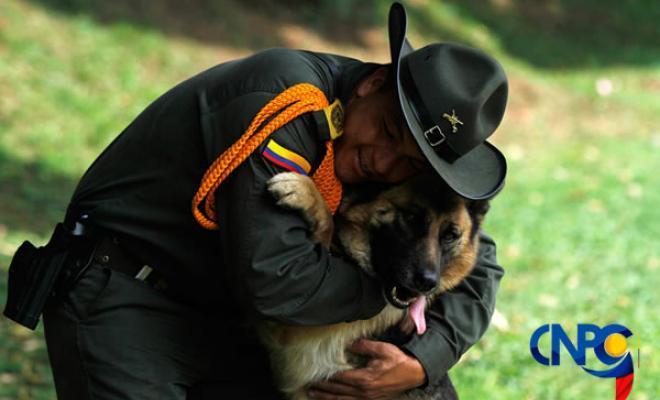 codigo-nacional-policia-convivencia-tenencia-mascotas-caninos-felinos-domesticos