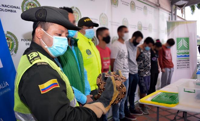 Policía-Metropolitana-de-Pereira-desarrolló-la-operación-Camaleón-en-pro-del-medio-ambiente-dos