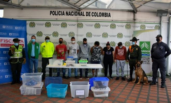 Policía-Metropolitana-de-Pereira-desarrolló-la-operación-Camaleón-en-pro-del-medio-ambiente