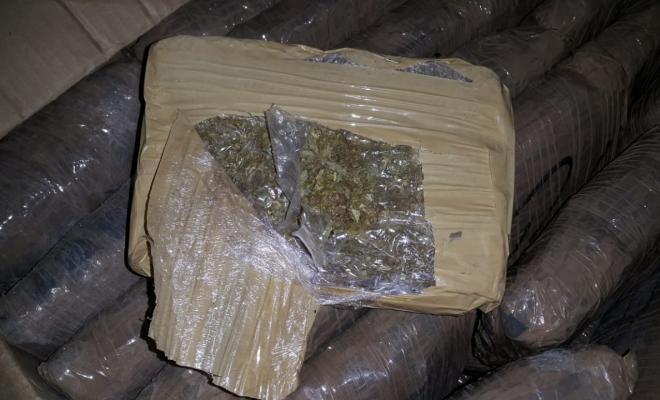 Ofensiva-contra-las-estructuras-narcotraficantes-dedicadas-al-tráfico-de-marihuana